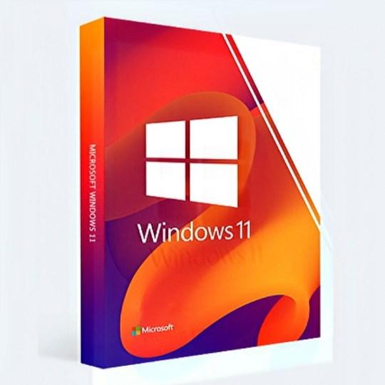 Windows 11 Pro 14